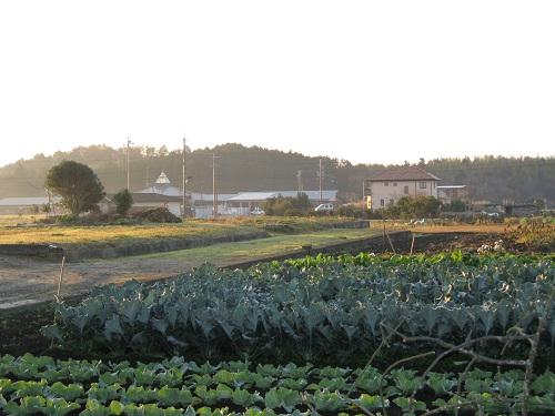 20111216-3.jpg