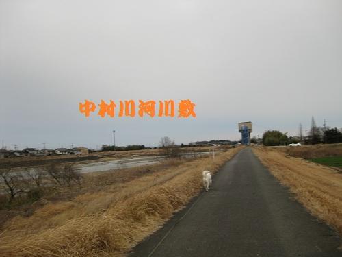20120226-3.jpg