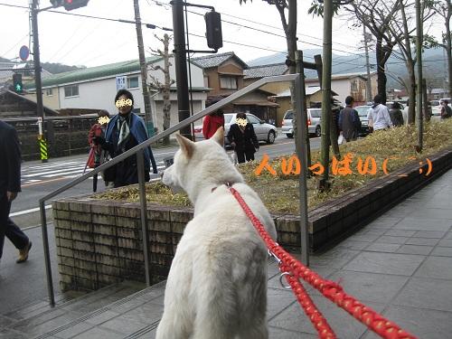 20120318-3.jpg