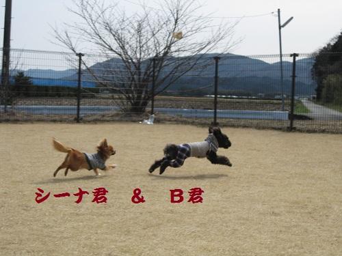 20120320-12.jpg