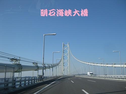 20120408-7.jpg