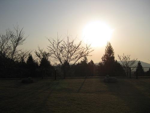20120409-1.jpg