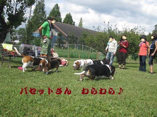 20120916-14.jpg