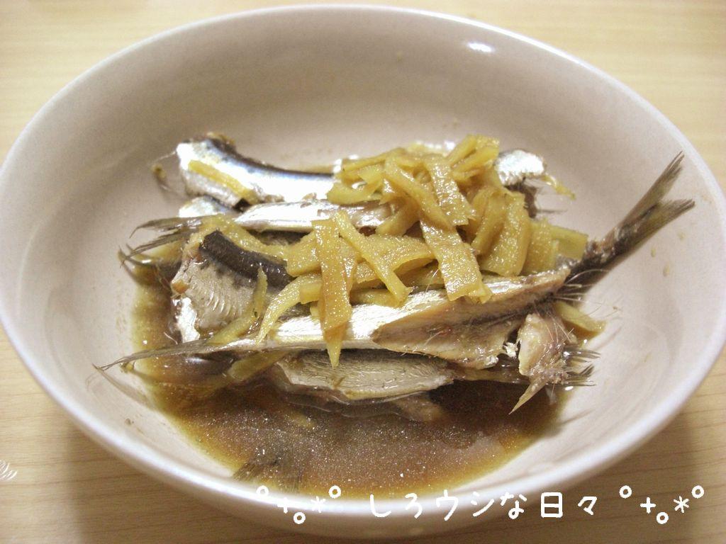 CIMG3546-blog.jpg