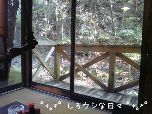 ichinosaka_1-blog.jpg