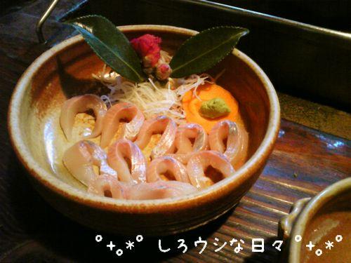 ichinosaka_2-blog.jpg