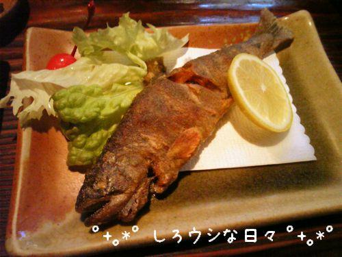 ichinosaka_6-blog.jpg