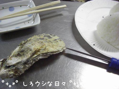 okayama_02-blog.jpg