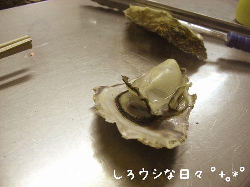 okayama_03-blog.jpg