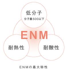ENM 体内酵素活性因子