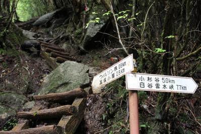 大株歩道入口2
