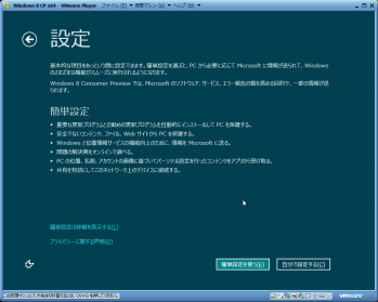 Windows_8_Consumer_Preview_033.png