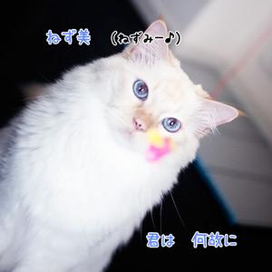 20110602_3.jpg