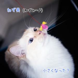 20110602_4.jpg