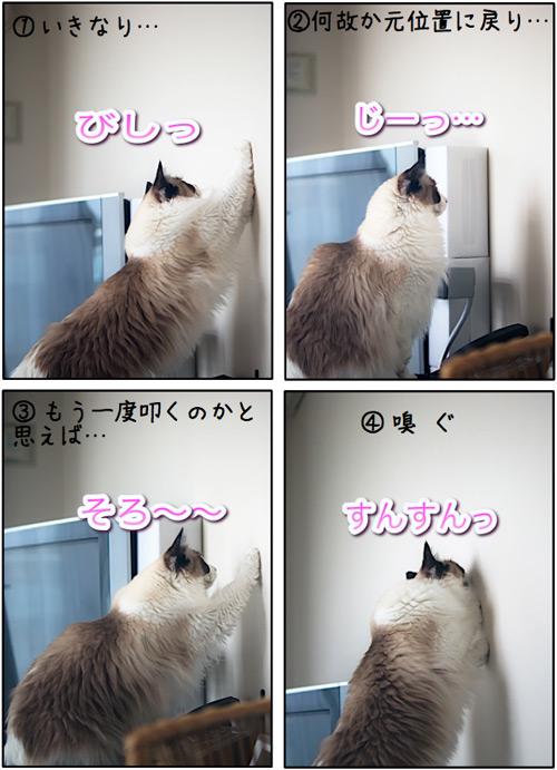 20110608_omake.jpg
