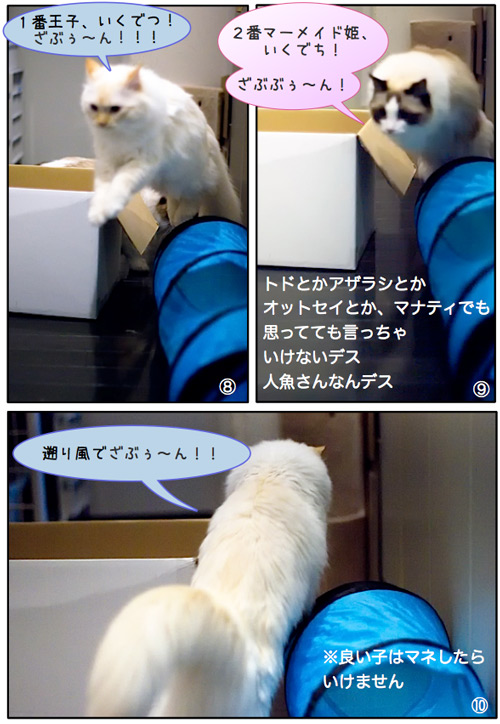 20110628_omake3.jpg