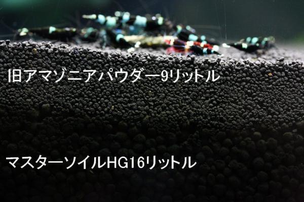 IMG_0049.jpg
