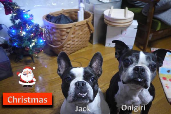 Christmas Onigiri Jack