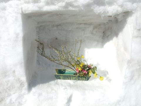 雪中生け花4