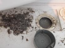 ハウスクリーニング・風呂掃除排水口b