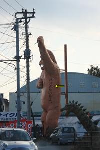 201002229.jpg