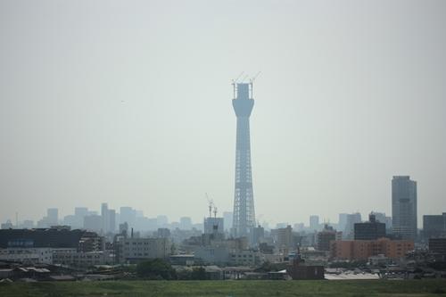 201008191.jpg