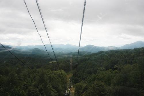 201009185.jpg