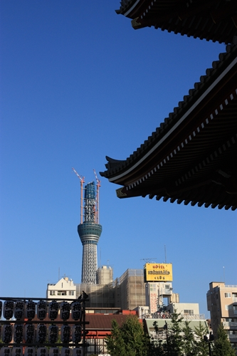 201010269.jpg