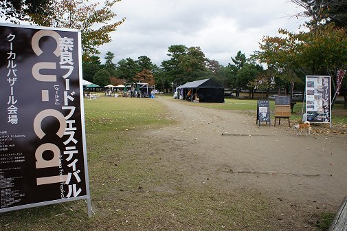 2011110706.jpg