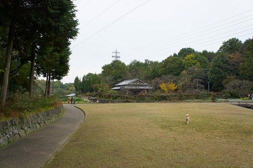 2011112303.jpg