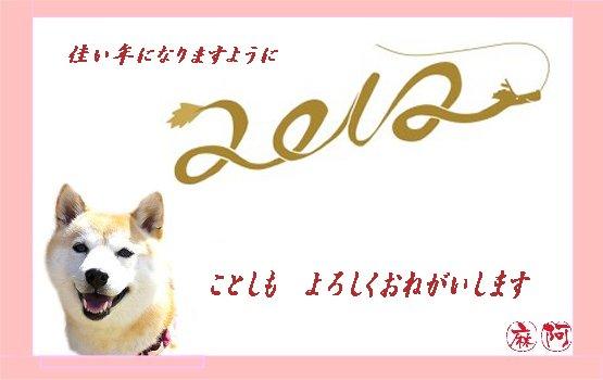 2012010102.jpg