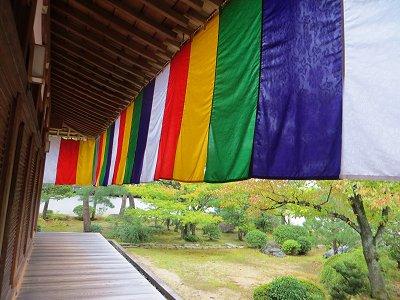 五色の幕が雨に映える総檜造り講堂downsize