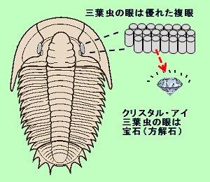 三葉虫のクリスタルアイ