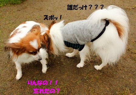 ちゃい+りん3