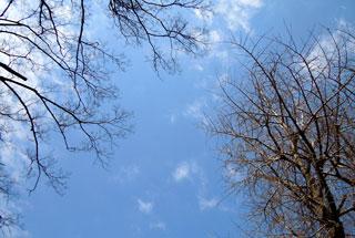 D_2012_22.jpg