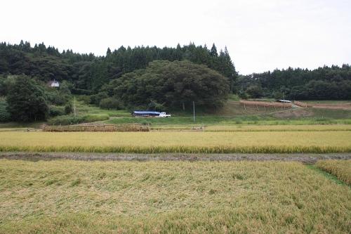 hanamaki_299.jpg