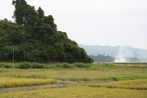 hanamaki_302.jpg