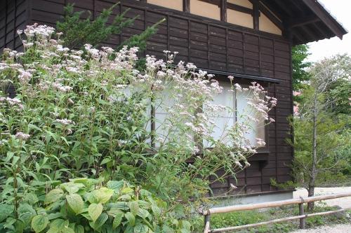 hanamaki_311.jpg