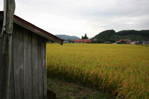 hanamaki_376.jpg