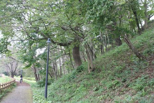 hanamaki_402.jpg
