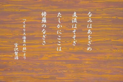 hanamaki_442.jpg