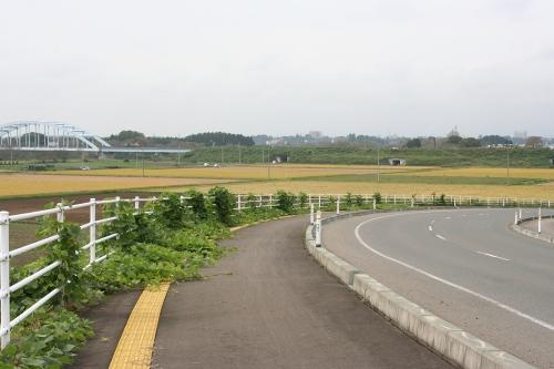 hanamaki_500.jpg