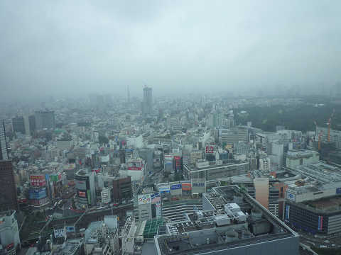 損保ジャパン日本興亜ビル 42階