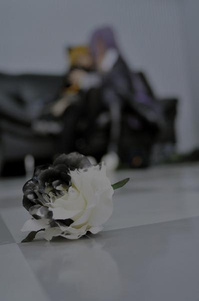 画像-006