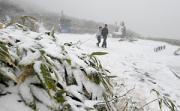 2011 蔵王 初冠雪