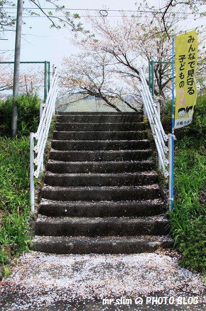 大和田_06