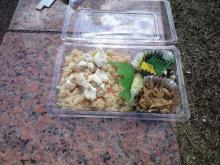 SLOW BIKE LIFE-昼食
