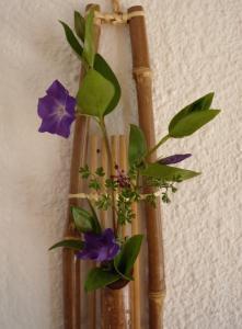 fleurs violettes1