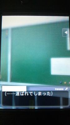 DSC_0049_20121106222216.jpg
