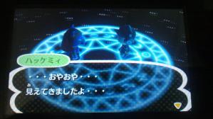DSC_0059_20121113221448.jpg